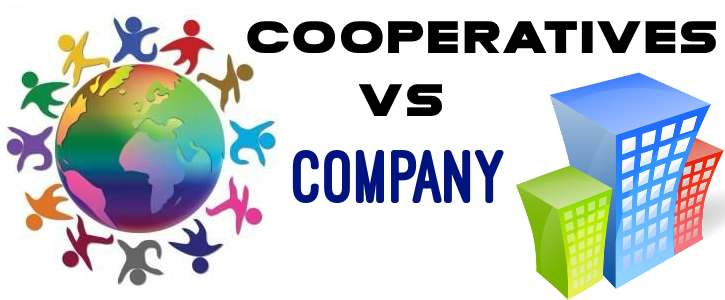 Cooperatives vs Company