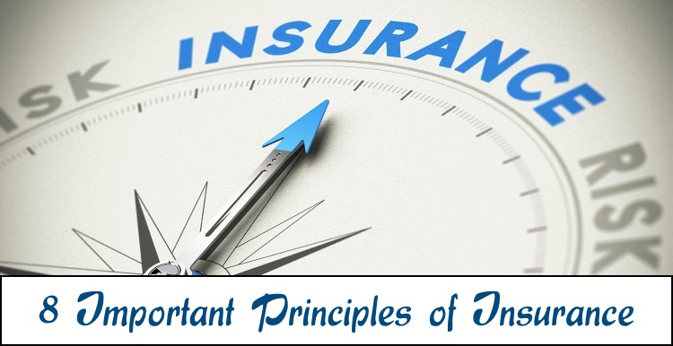 8 Important Principles of insurance