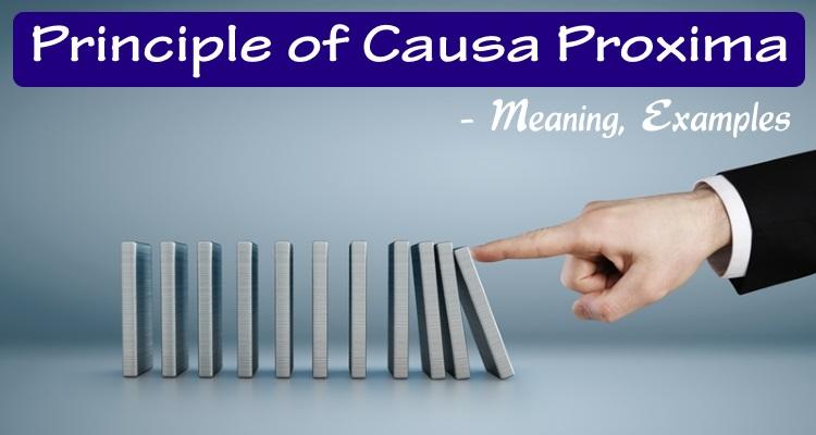 Principle of Causa Proxima
